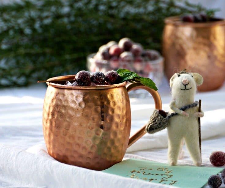 Spiced Cranberry Mule {Recipe}