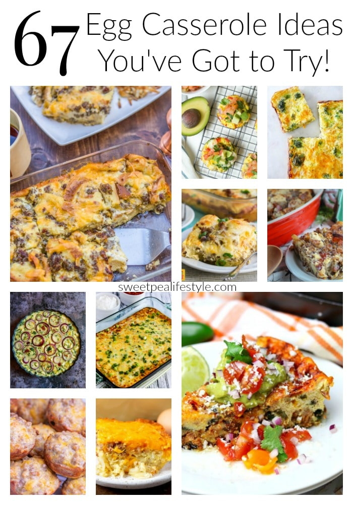 Egg Casserole Roundup Ideas