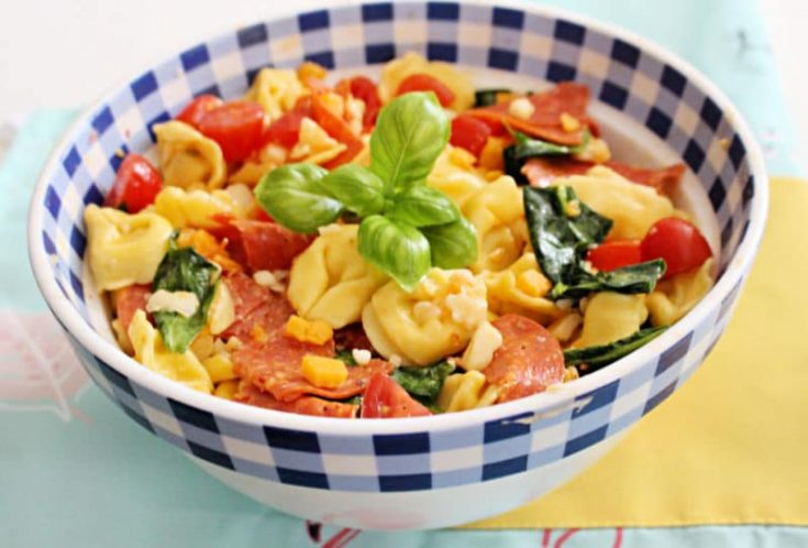Quick And Easy Tuscan Tortellini Pasta Salad