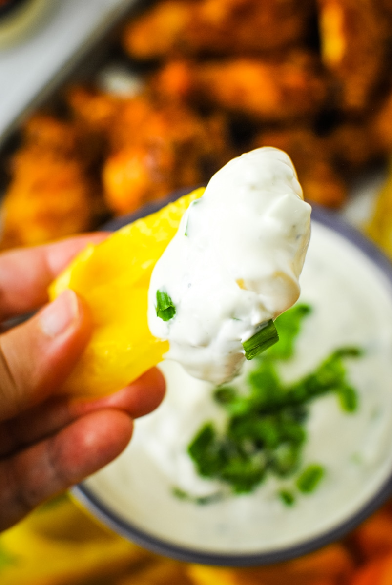 Low Carb Green Onion Dip